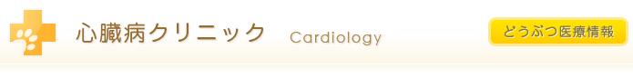 心臓病クリニック