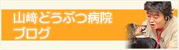 山崎どうぶつ病院ブログ